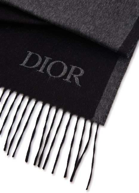 DIORDior Logo silk scarf