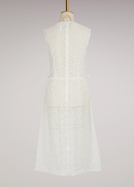 PaskalTransparent dress