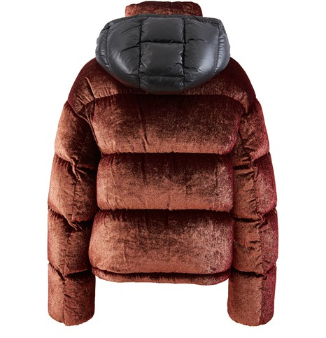 MONCLERCaille down jacket