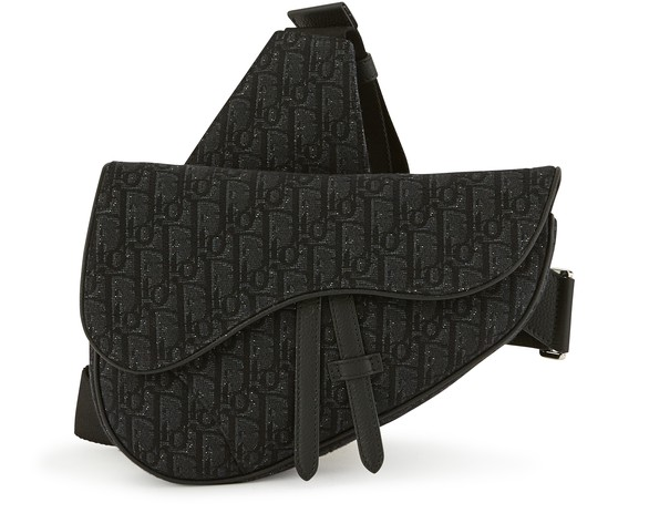 DIOR Sac Saddle Dior Oblique
